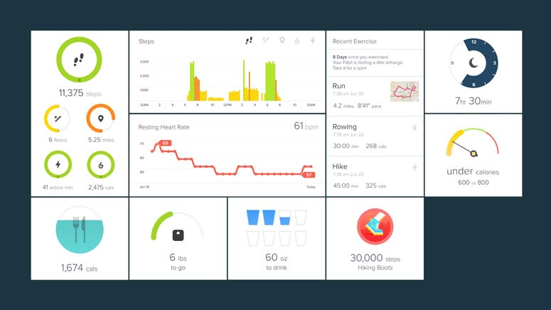 fitbit activity tracker smartphone of computer app